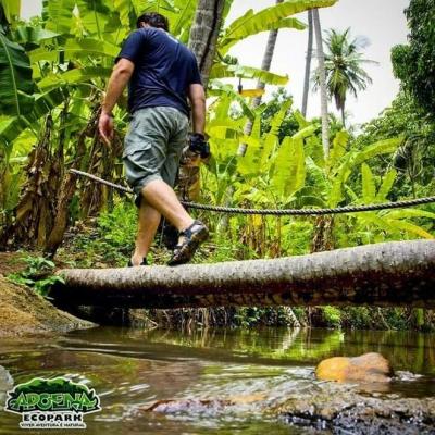 Diversão e lazer com o Apoena Ecopark! 01 ingresso adulto com atividades de R$30 por R$19,90