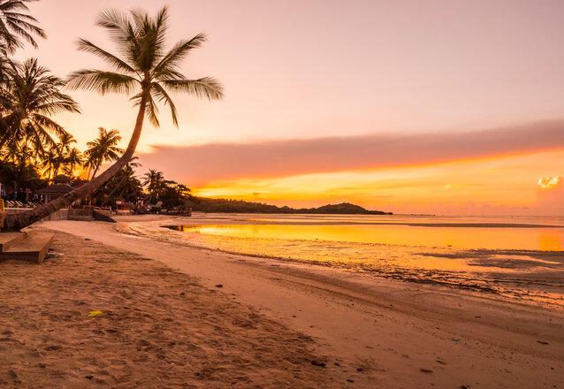 Transfer para o Beach Park (Ida e Volta) de R$35 por apenas R$29,90